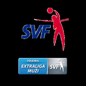 partner_svf